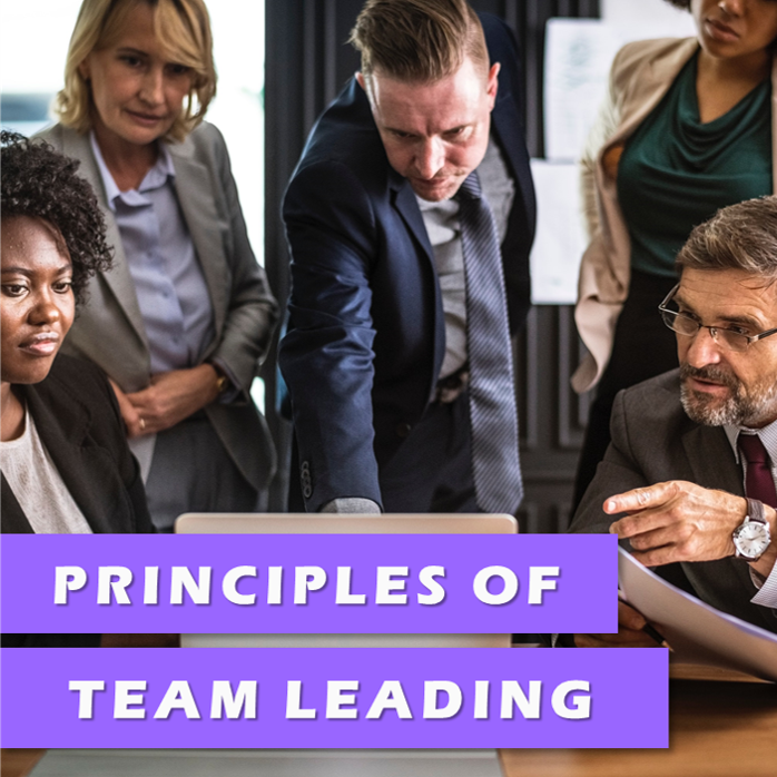 Principles of Team Leading Level 2